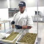 Acres Cannabis - Kitchen